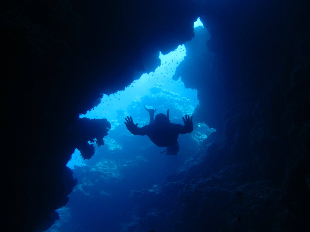 Sertraline cost cvs.doc - Free Dive Through Caves