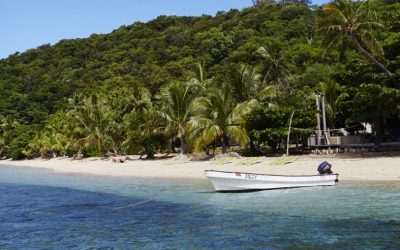 Fiji Mainland or the Islands: How to Choose?
