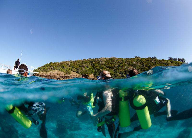 Diving-in-Fiji-800_575