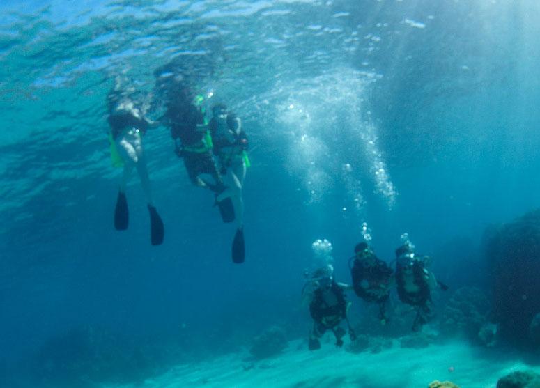 Diving-in-Fiji-at-Mantaray-Island-Resort-800_575