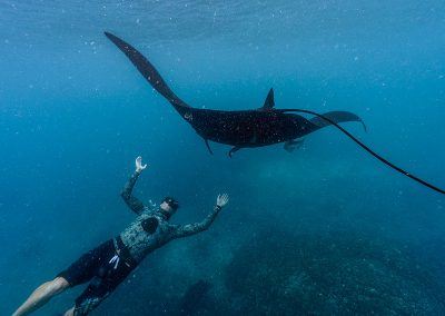 Freediving-with-Manta-Ray-Yawasas-Fiji-800_575