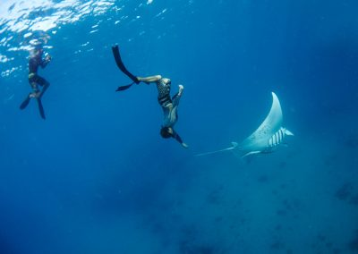 Swimming-with-Manta-Rays-in-Fiji-at-Mantaray-Island-Resort-800_575